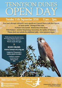 Tennyson Dunes Open Day 2016